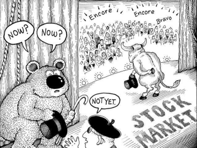 karhumarkkinan-aika-opiskelijabudjetilla